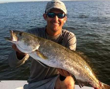 large speckled trout show up at anytime