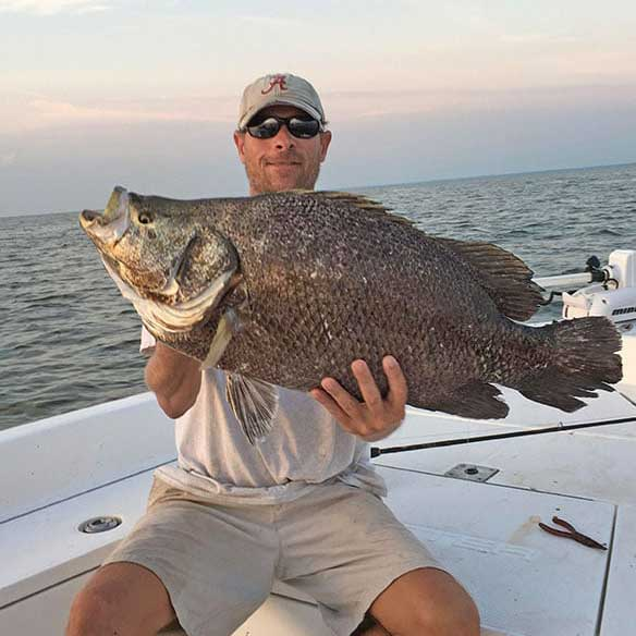 Man holding trophy tripletail/Blackfish