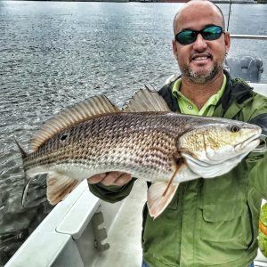 bald man holding redfish