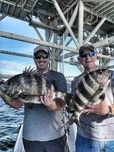 Sheepshead fishing Mobile Bay