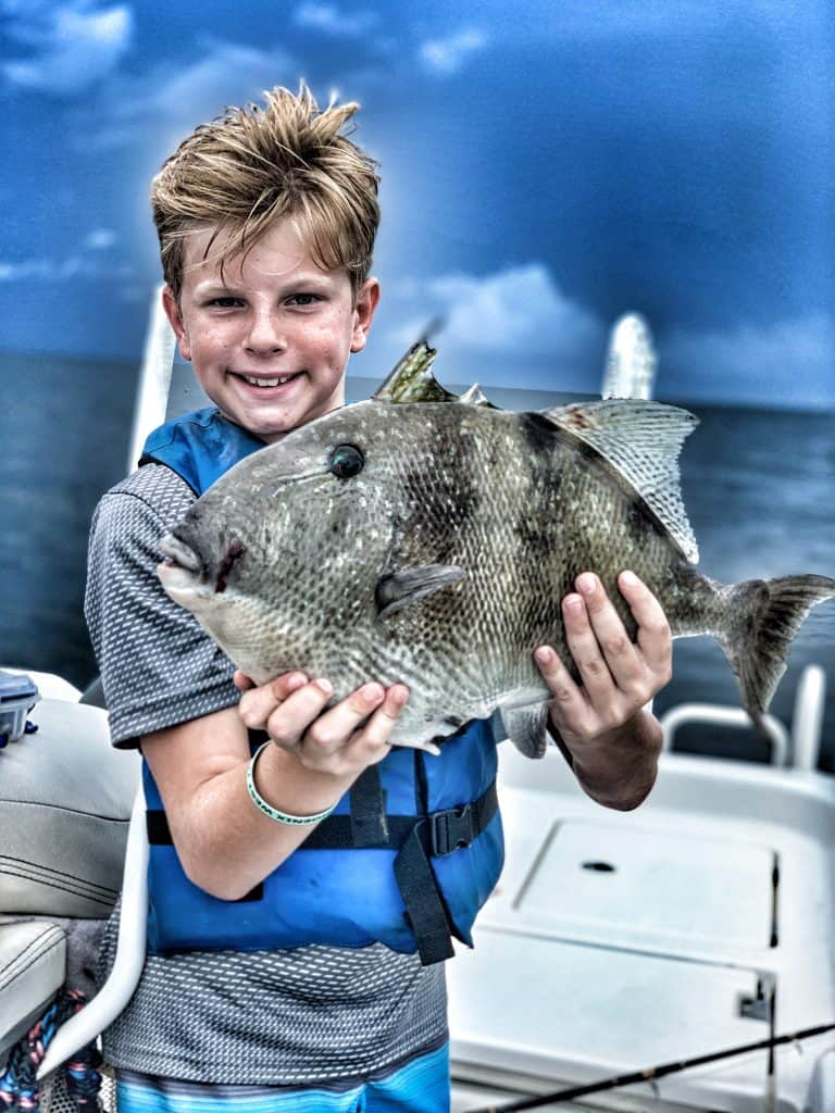 Gulf shores triggerfish fishing
