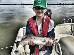 best bait to catch speckled trout