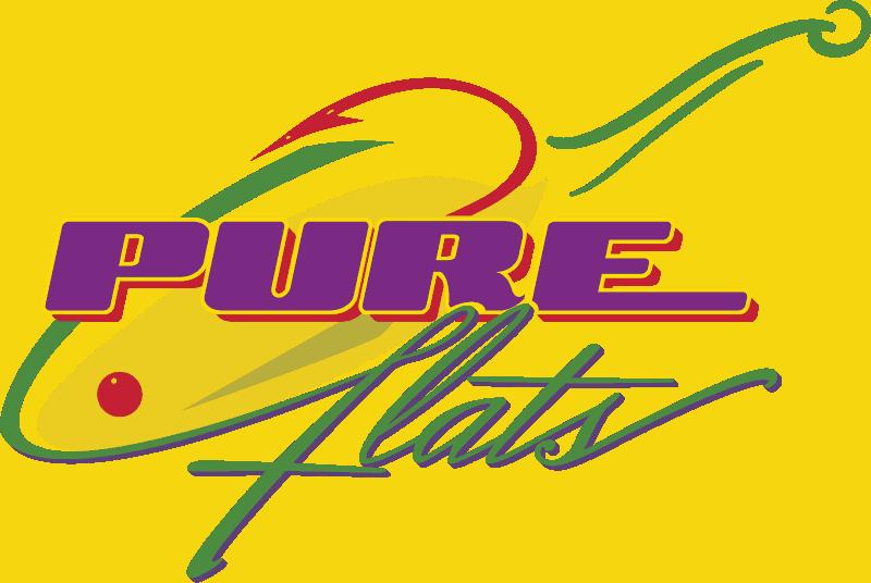 Winter classic 2020 sponsor