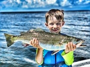 big speckled trout mobile bay