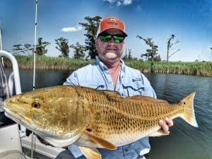 mobile tensaw delta redfish